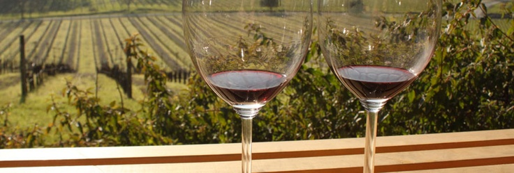 Sonoma County California Wine Country Visitor Resources – Dining, Wineries, Shopping, Lodging, Events: SomethingAboutSonoma.com