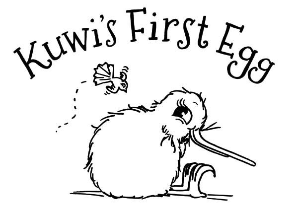 Kuwi First Egg Kiwi Bird Coloring Pages Download U0026 Print