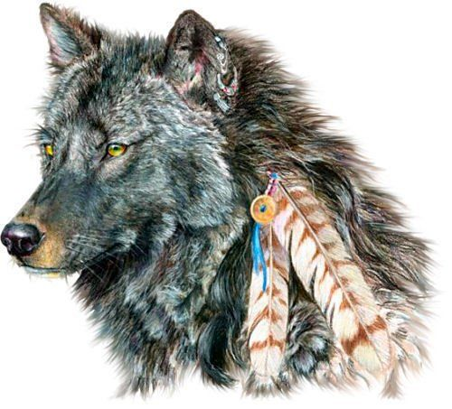 My son's lone wolf native american tat. Can't wait!   Lone Wolf a young male who left the herd to find its own territory. His wolf tattoo = a young man trying to find his own place in life!