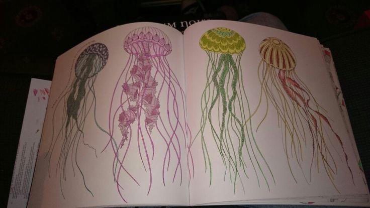 Millie marotta, animal kingdom, jellyfish @ilovetea86