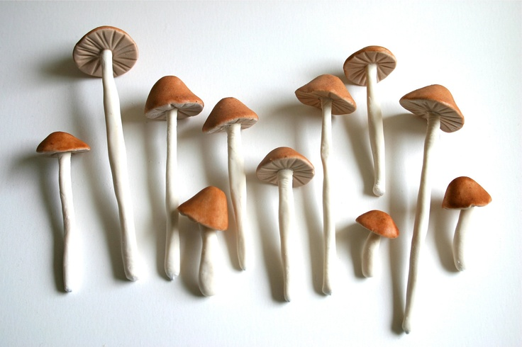 These are edible. I'd like to make some with clay.: Edible Wild, Wild Sugar, Edible Mushrooms, Cakes Toppers, Cakes Decor, Wedding Cakes, Fall Treats, Wild Mushrooms, Sugar Mushrooms