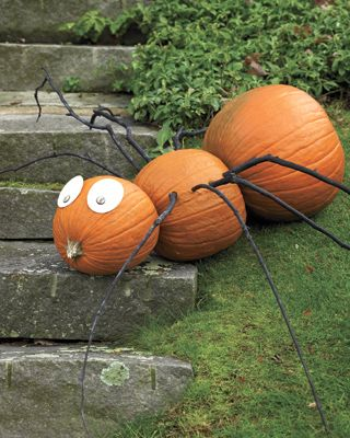 Halloween pumpkin spider (for the kids): Turn three gourds on their side to make the spider. Button eyes and branch legs complete him... more info here.