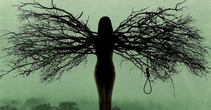 WGN America Renews 'Salem' for Season 2 -- The network has issued a 13-episode order for this new series starring Janet Montgomery and Shane West, set to debut in 2015. -- http://www.tvweb.com/news/wgn-america-renews-salem-for-season-2