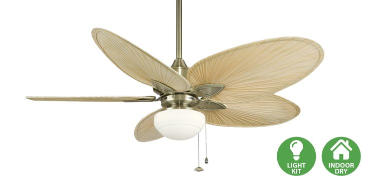 """Beautifully crafted with style and versatility in mind, The Windpointe by Fanimation will provide the right look for any room. All Windpointe ceiling fans can accommodate a ceiling slope up to 30 degrees and operate on three forward and reverse speeds. The Windpointe series includes a 6"""" downrod and can also be purchased with an optional close-to-ceiling kit.  www.fantastik.asia"""