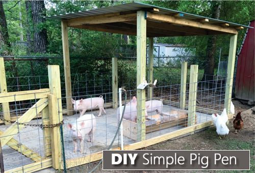 How To Build A Simple Pig Pen