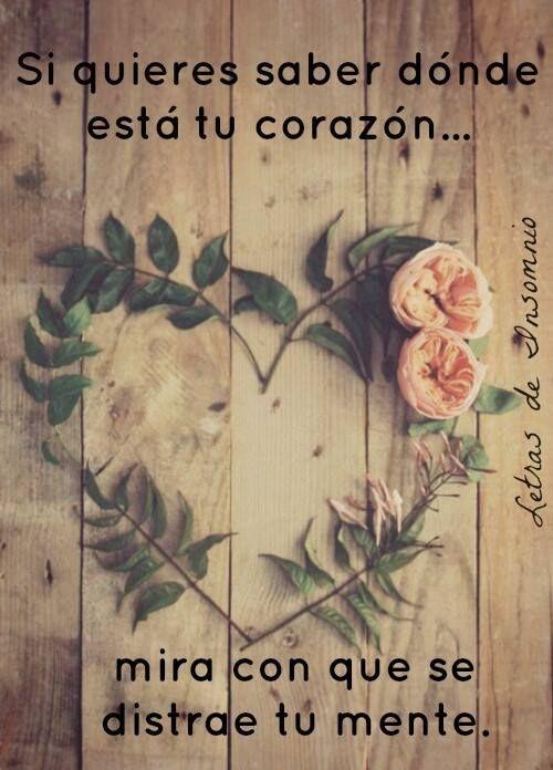 ✿⊱♥ Si quieres saber donde esta tu corazón... mira con que se distrae tu mente...