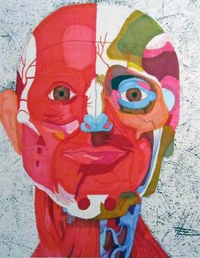 """Saatchi Art Artist Mariel Collins; Drawing, """"Muscle Structure of the Head and Neck"""" #art"""