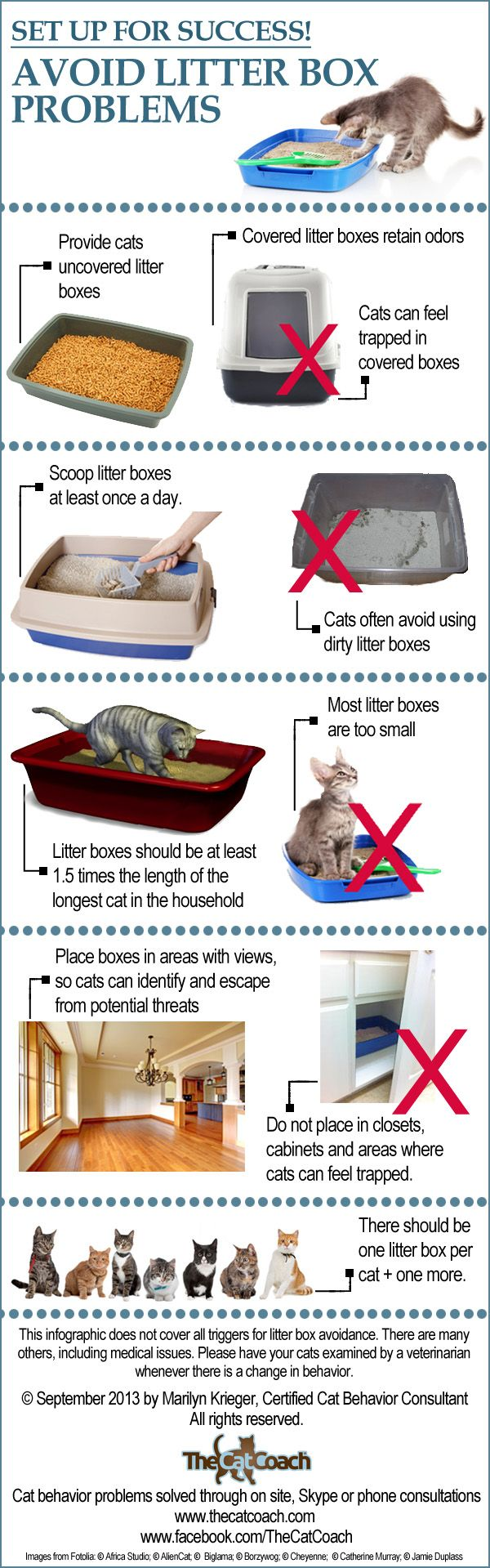 Litter box issues are the number one reasons people seek me out for a cat behavior consultation. Because of that, I created this info-graphi...