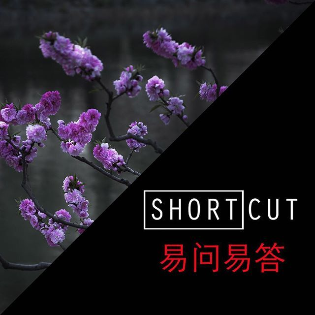 """Watch the exclusive interview of the Chinese photographer Shen Wei. His current events include a solo show at ON/Gallery Beijing (until March 11 2018) and an upcoming group show at SinArts Gallery (""""Ménage à Trois""""March 17 -April 072018). His works will be also exhibited at next Art Paris in April 5  8 2018 with ON/Gallery. Link in bio @shenweiartist @ongalleryon @sinartsgallery #photographyofchina #shortcut #interview #china #video #china #中国 #视频访 #cctvenglish#worldofchina #chineseculture"""