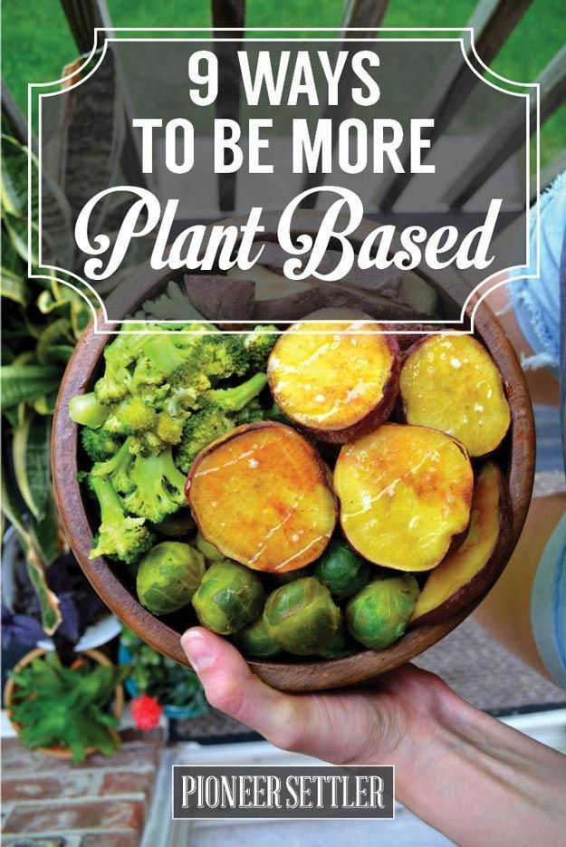 9 Ways To Eat A More Plant Based Diet For Healthy Happy Homesteading | Healthier and Greener Food Ideas by Pioneer Settler at http://pioneersettler.com/plant-based-diet/