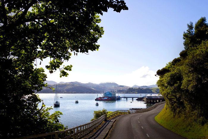 Mangonui Wharf and world famous Mangonui Fish Shop (Doubtless Bay NZ). copyright © Debra Stratford