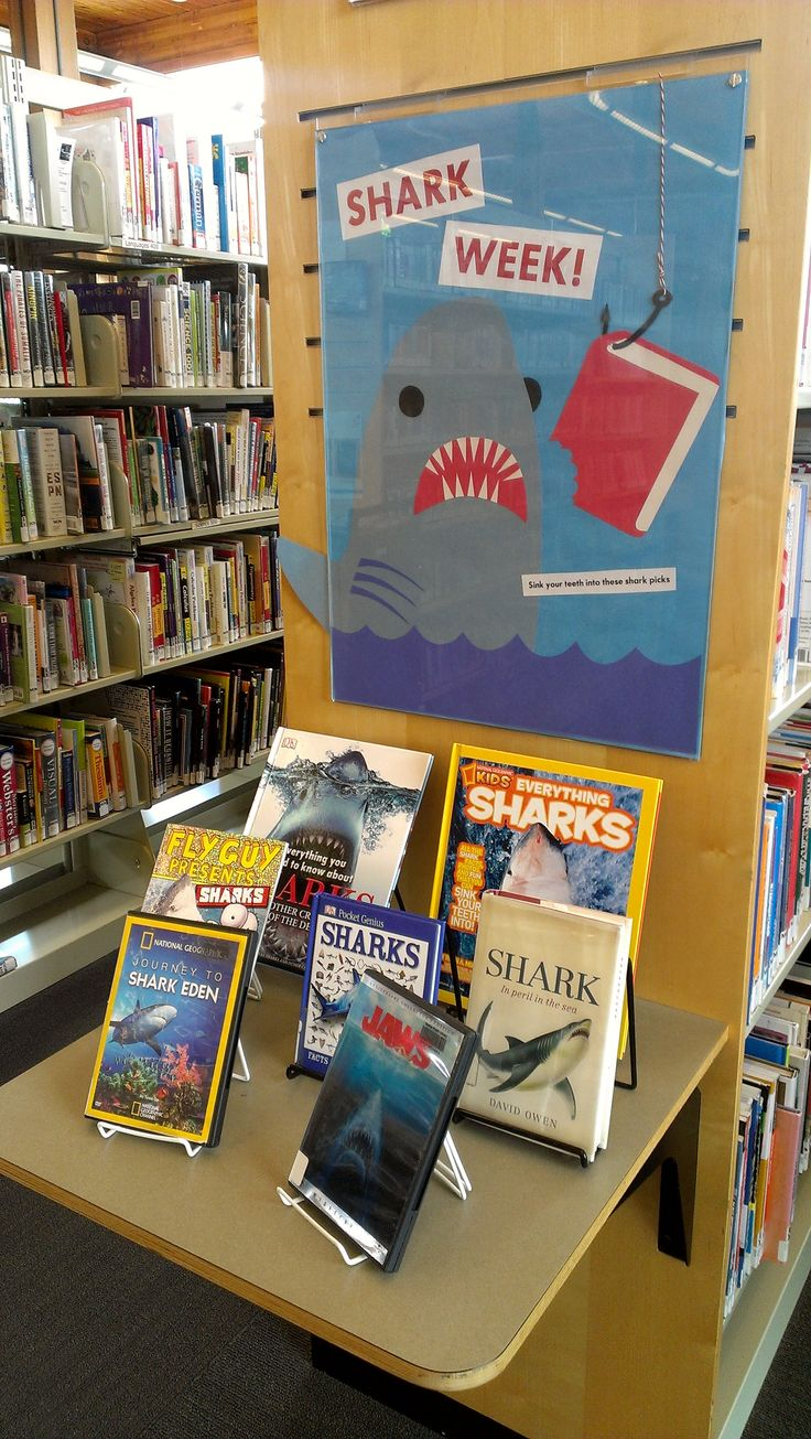 Shark week at the Montlake Branch (Seattle Public Library)
