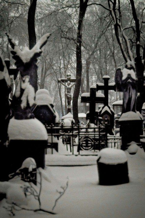 Старое и Новое Донское кладбище (Москва) – 427 фотографій