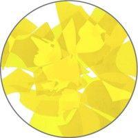 G-077 Daffodil