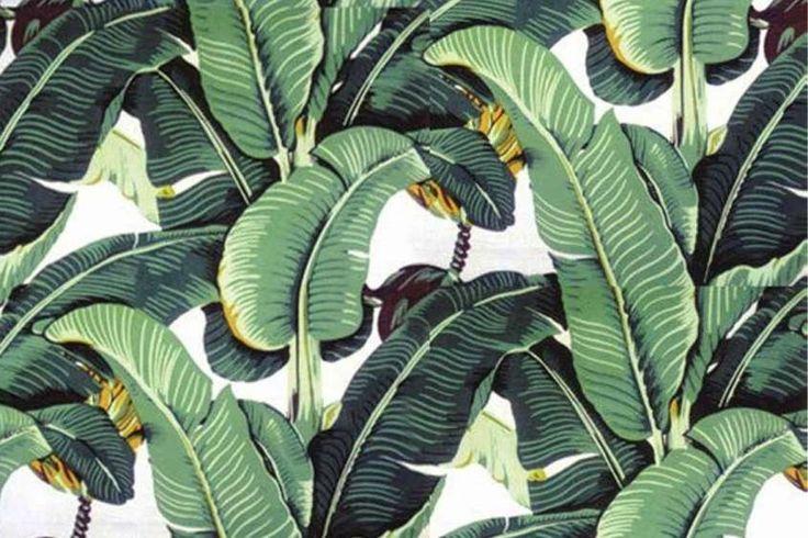 Carte da parati tropicali - Carta per pareti tropicale