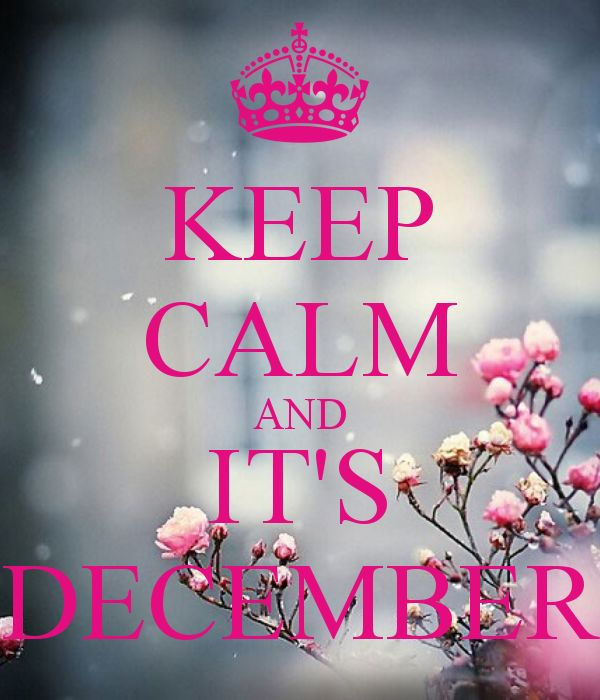 KEEP CALM AND ITu0027S DECEMBER Photo Gallery
