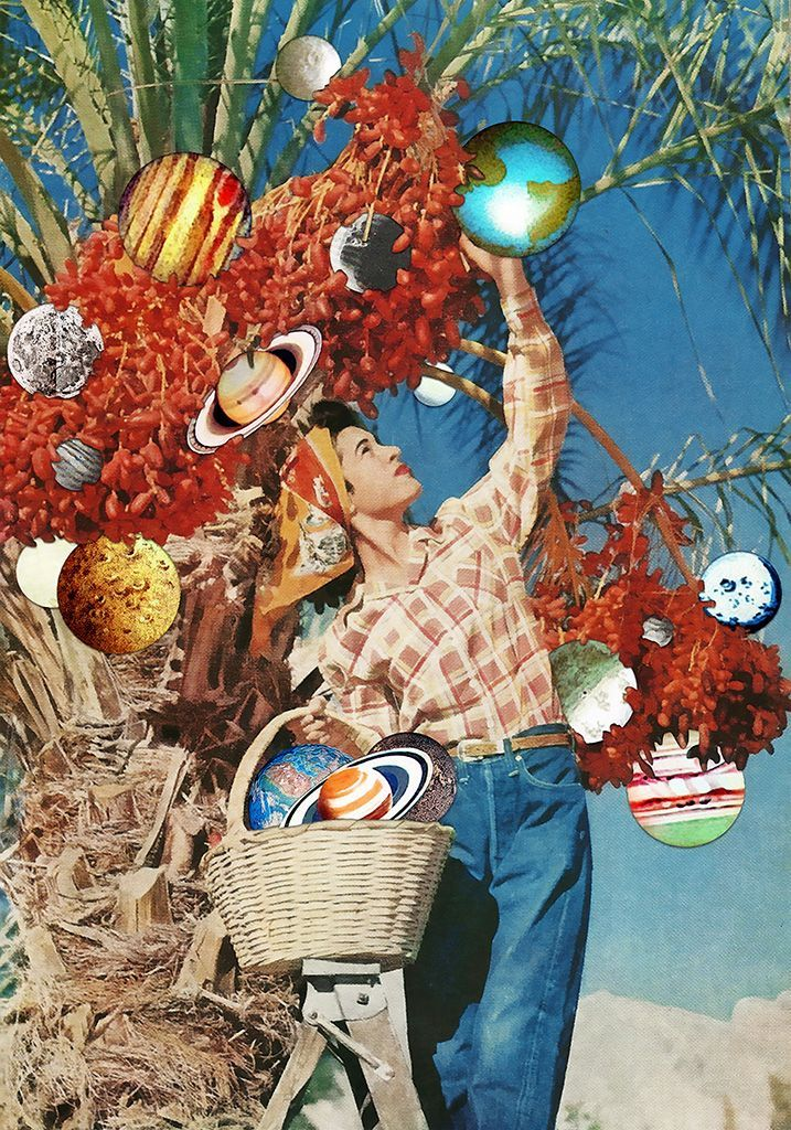 In Season via Eugenia Loli Collage. Click on the image to see more!