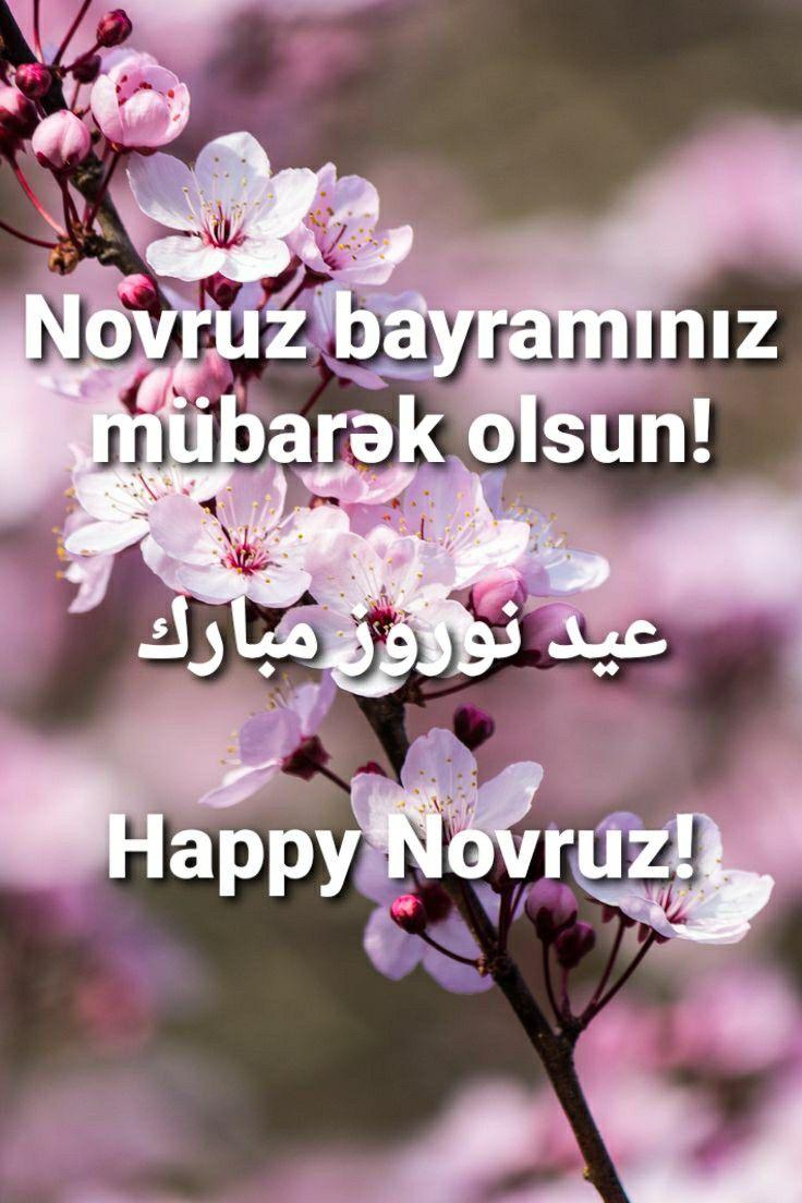 Novruz Bayram Mubarək Azerbaijan Holiday عيد نوروز مبارك اذربيجان Countryside Beautiful Plants