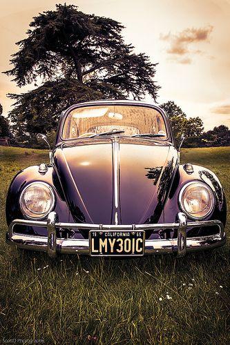 Une très belle VW Beetle de couleur violet ! Original et très #vintage cette #voiture nous plait bien pas vous ?