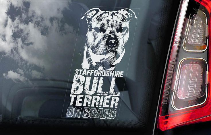 Staffordshire Bull Terrier Car Window Sticker Dog on
