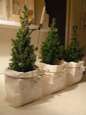 Bedrukte papieren zakjes op een pot met kleine kerstboom