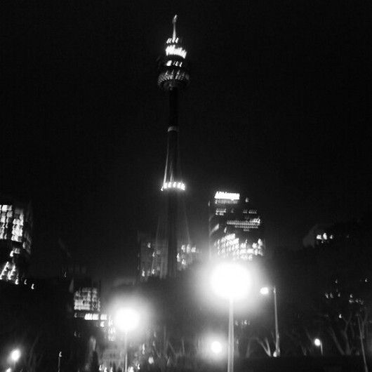 Looking at Sydney Tower Eye from Hyde park at night.