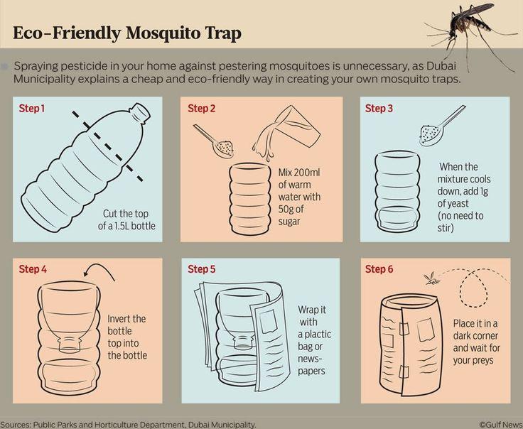 Φτιάχνω Παγίδα για τα Κουνούπια ~ What Can I Do? - ΦΤΙΑΞΤΟ ΜΟΝΟΣ ΣΟΥ