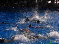 Plan de Natación 2016 | La Corporación del Deporte, ofrece cursos de natación a partir de los 4 años, siendo fundamental el aprendizaje en una primera etapa, por ese motivo hemos diseñado este plan para iniciarse en las diferentes etapas de natación dirigidas tanto a niños como a adultos y para t...