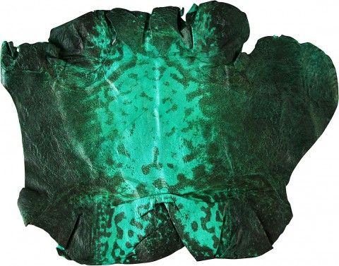 Γνήσια βάτραχος / βάτραχος δέρμα FROGSK01 σμαραγδένιο πράσινο