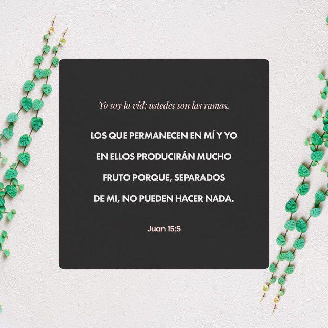 """""""Yo soy la #vid, vosotros los #pámpanos; el que permanece en mí, y yo en él, éste lleva mucho fruto; porque separados de mí nada podéis hacer."""" #S.Juan 15:5 RVR1960 http://bible.com/149/jhn.15.5.rvr1960"""