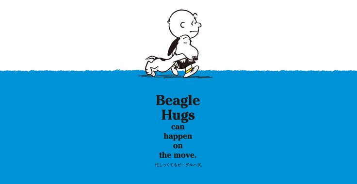 Beagle Hugs can Happen On the Move.