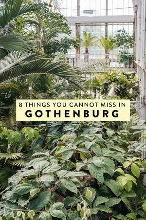 8 Things You Absolutely Cannot Miss in Gothenburg, Sweden