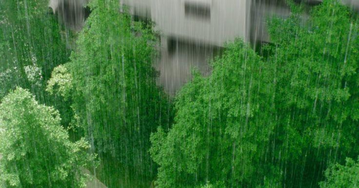 Como cavar uma trincheira para drenagem de água de chuva. A água de chuva pode empoçar ao redor da fundação de uma casa, ou até pior, infiltrar-se sob a fundação, fazendo com que ela afunde. Isso pode resultar em solo desnivelado, rachaduras nos tijolos e outros problemas estruturais. Uma solução para esse problema é cavar uma trincheira para fora da fundação da casa para encaminhar a água para longe ...