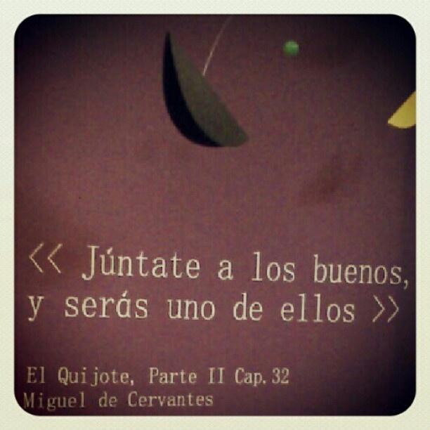 Don Quijote de la Mancha! Photo by gabicaye