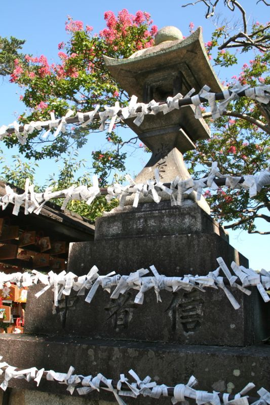 The Ultimate Guide to Kyoto Temples & Shrines