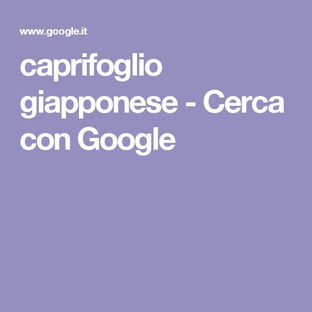 caprifoglio giapponese - Cerca con Google