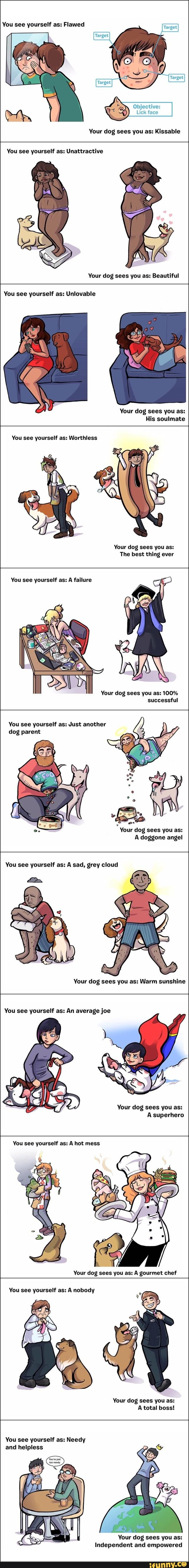 doggo, loves, you, whatdidwedotodeservedoggo
