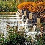 El parque ecológico de Xochimilco se encuentra ubicado a 23 KM al sur de la capital de México. Fue diseñado por Mario Schjetnan en un terreno de 165 hectáreas y declarado Parque Nacional en 1984, tres años más tarde, este espacio se reconoció como Patrimonio de la Humanidad por la UNESCO.   El proyecto …