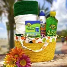 Beach towel,aloe, sun screen, magazine etc