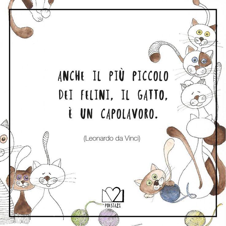"""""""Anche il più piccolo dei felini, il gatto, è un capolavoro"""" Leonardo da Vinci"""
