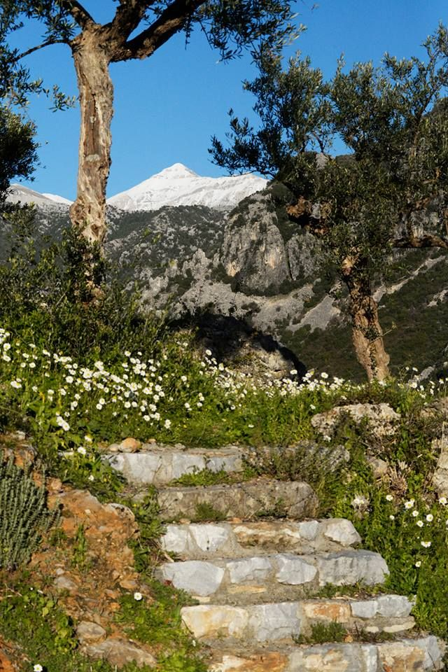 Early spring!! Taygetos mountain