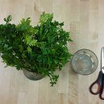 Fűszernövények aprítása