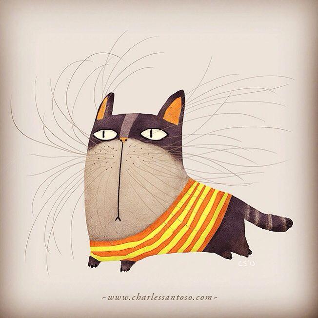 Mr Whiskey the cat | Charles Santoso
