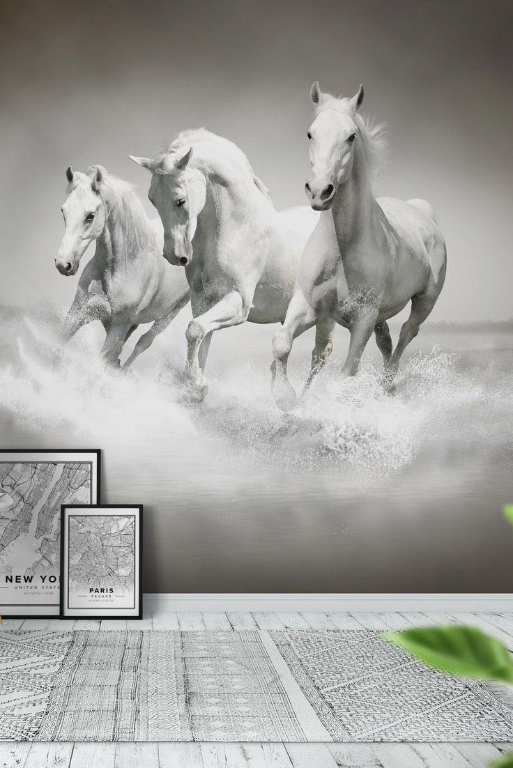 Fantastic Wallpaper Horse Wall - f0832729f7b5b803cd0a3cf8c3b2098a--su-beautiful  Picture_44339.jpg