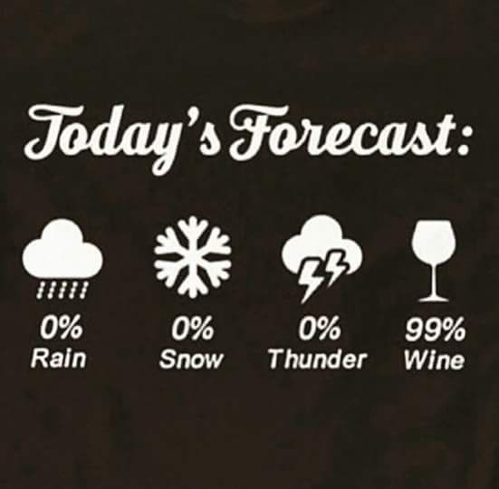 Today's Forecast: Wine likely  #Wine #Humor #funny