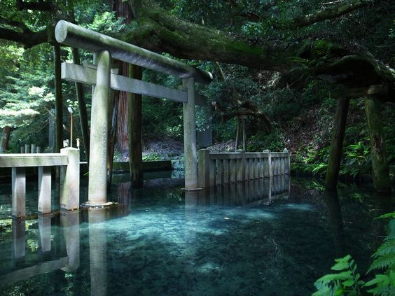 """""""#一度は行ってみたい日本の絶景 こちらのお写真では「鹿島神宮」と言う場所にある 「御手洗池」と云う御池の様なのですが これは確かに行きたくなってしまう美しい光景ですねぇ(*´ `*)"""""""