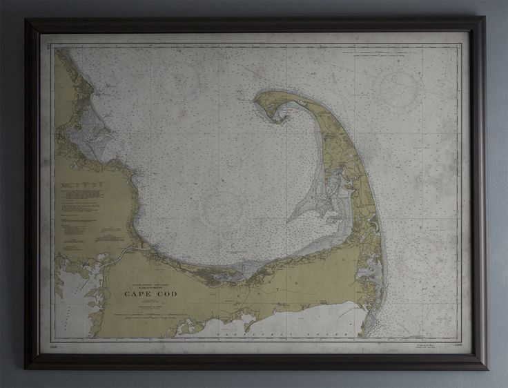 Cape Cod Map : Nautical Map - Vintage - Early 20th C.