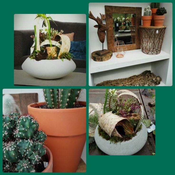 Bloemstuk gemaakt en etaleren. # botanic mood :D