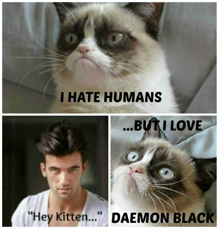 I love DAEMON BLACK