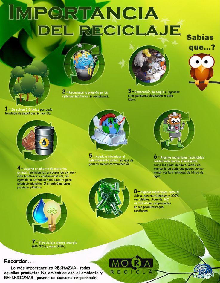 Un afiche que demuestra algunos tips o beneficios del reciclaje. Sintactica: Se crean modulos de informacion en donde se ve una imagen rodeada por flechas.  El color verde y las formas organicas predominas en la imagen.  Semantica: La forma y los colores aluden inmediatamente a algo natural y ecologico. Critica: Los textos son muy pequeños relacionados con el formato de la imagen. La ilustración y la imagen no mantienen la misma linea grafica.